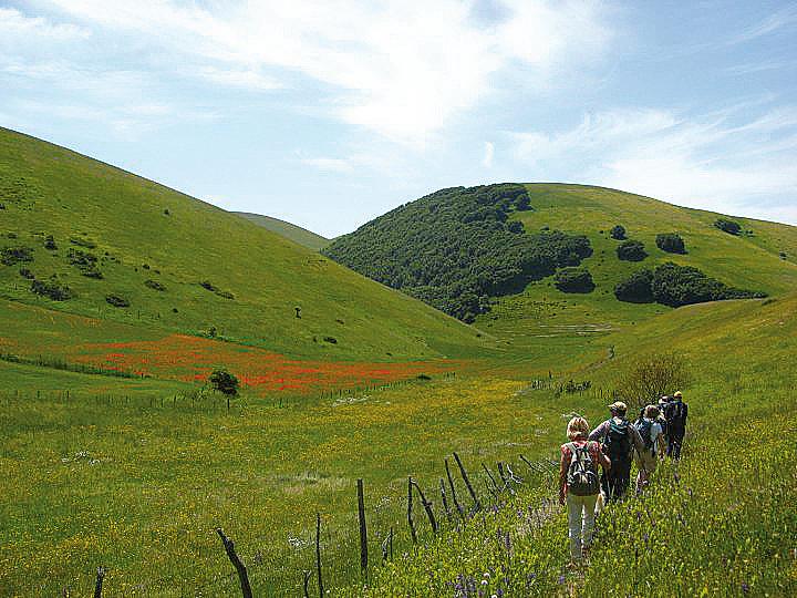 ecoturismo-FOTO-DI-DONALD-SUZZI